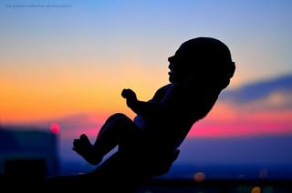Domestic Adoption: Evaluating Risks