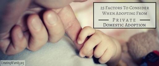 private domestic adoption