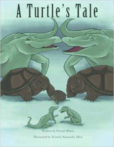 a turtle's tale