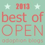 2013 Best of Open Adoption Blogs