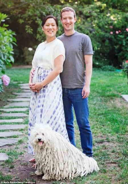 Mark Zuckerberg announces recurrent miscarriages