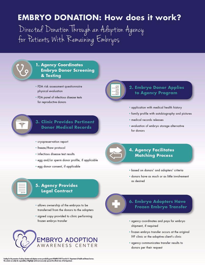 embryo adoption process; embryo donation process