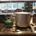 largest pot
